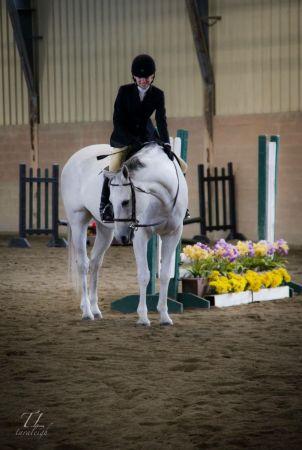 North Jersey Equestrian Center || The Tri-State Premier