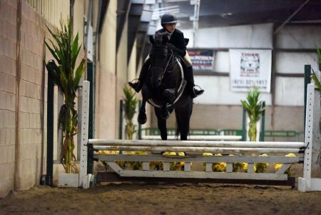 North Jersey Equestrian Center The Tri State Premier